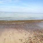 Kunigiškiai пляж