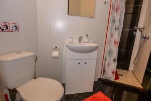 Dvivietis Nr. 2 - vonios kambarys su dušu